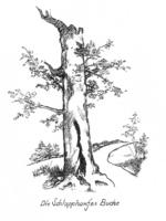 1707_200.jpg